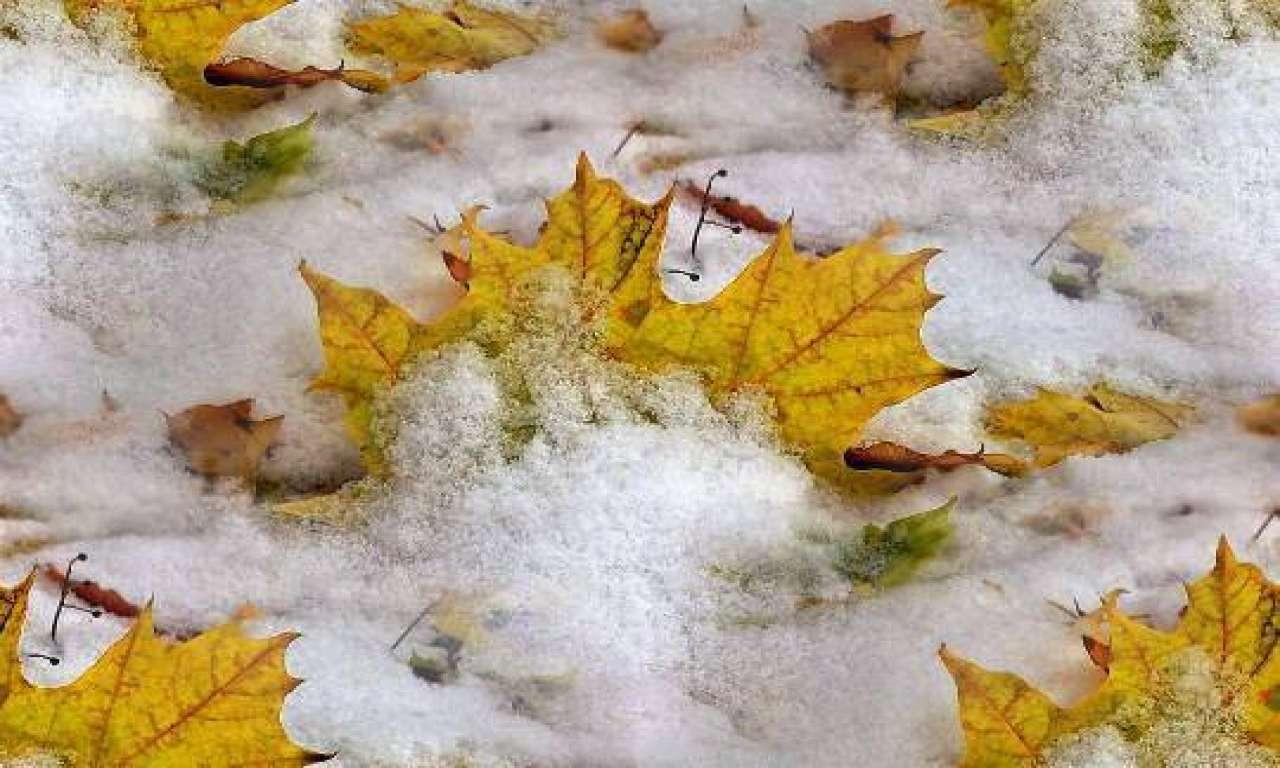 Пік похолодання на Черкащині пройдено: з 29 листопада потепліє