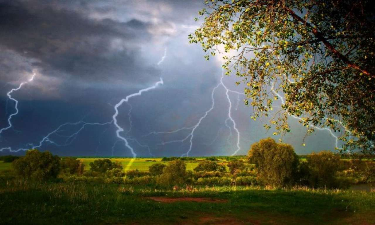 Дощі з грозами та поривчастим вітром прогнозуються на Черкащині