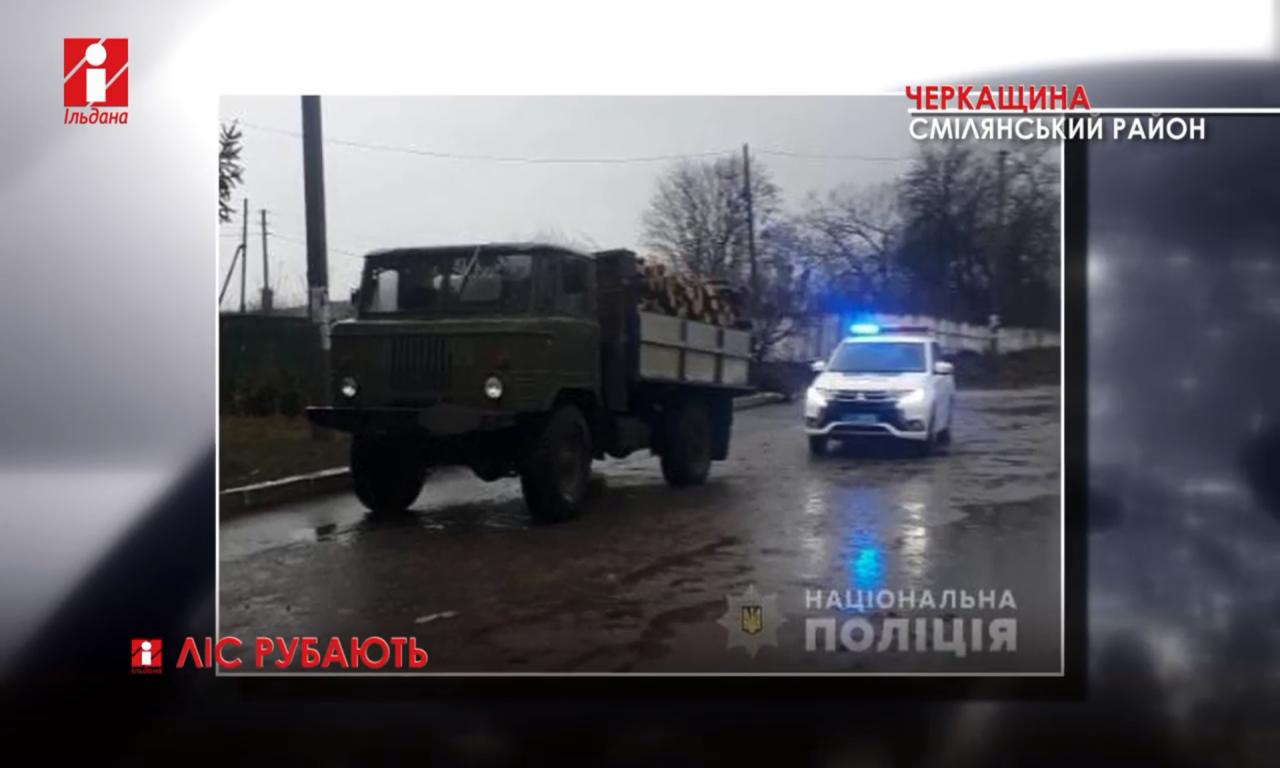 На Смілянщині виявили дві вантажівки з нелегальною деревиною (ВІДЕО)