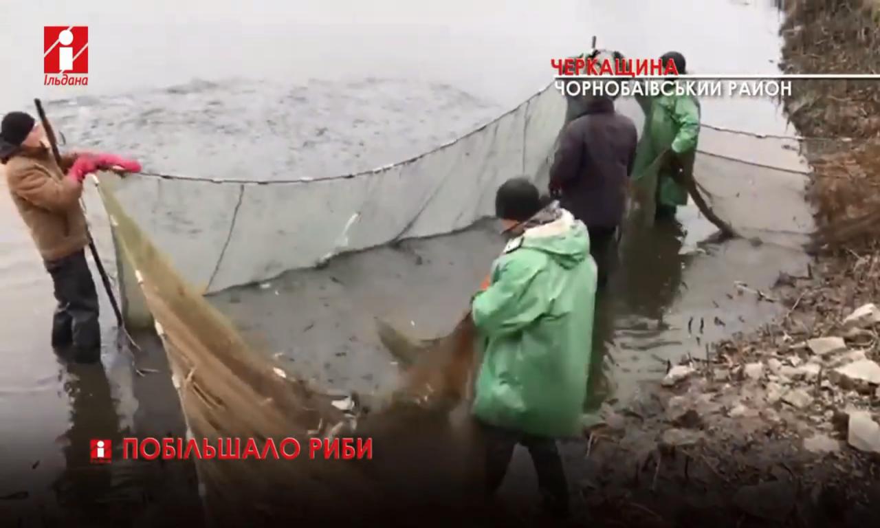 У водойми Черкащини випустять 36 тисяч рибин (ВІДЕО)