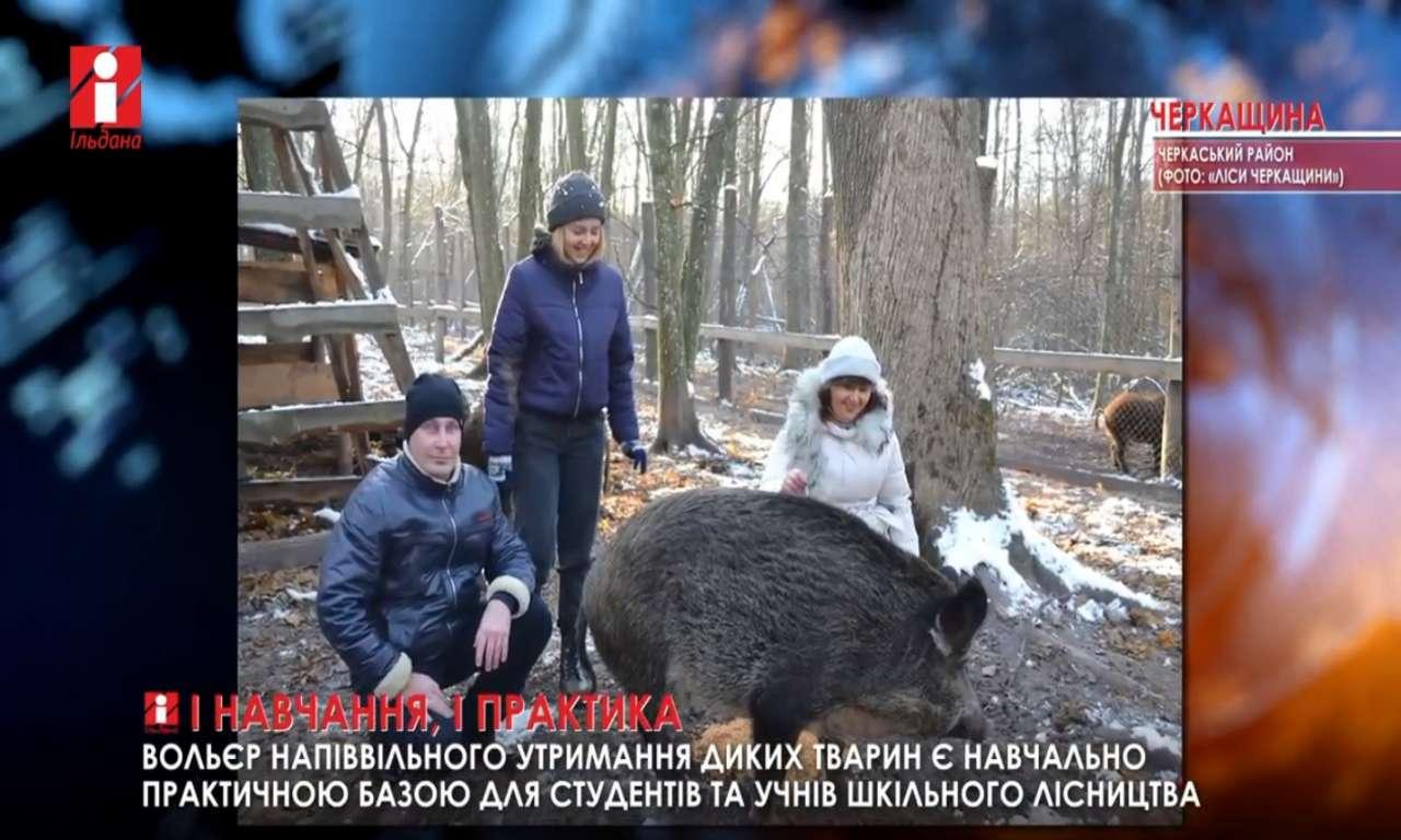 Черкаські студенти долучилися долучились до всеукраїнської акції «Нагодуй птахів узимку» (ВІДЕО)