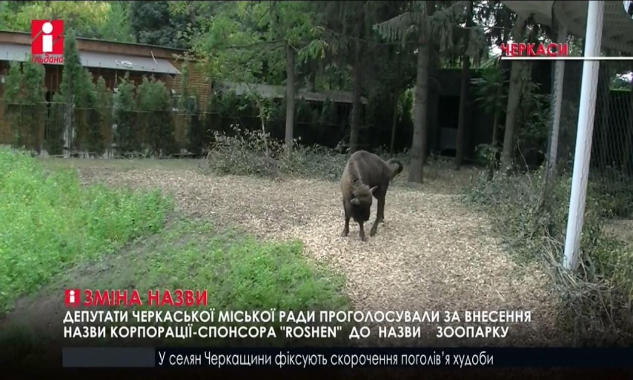 Черкаський зоопарк матиме назву Roshen (ВІДЕО)