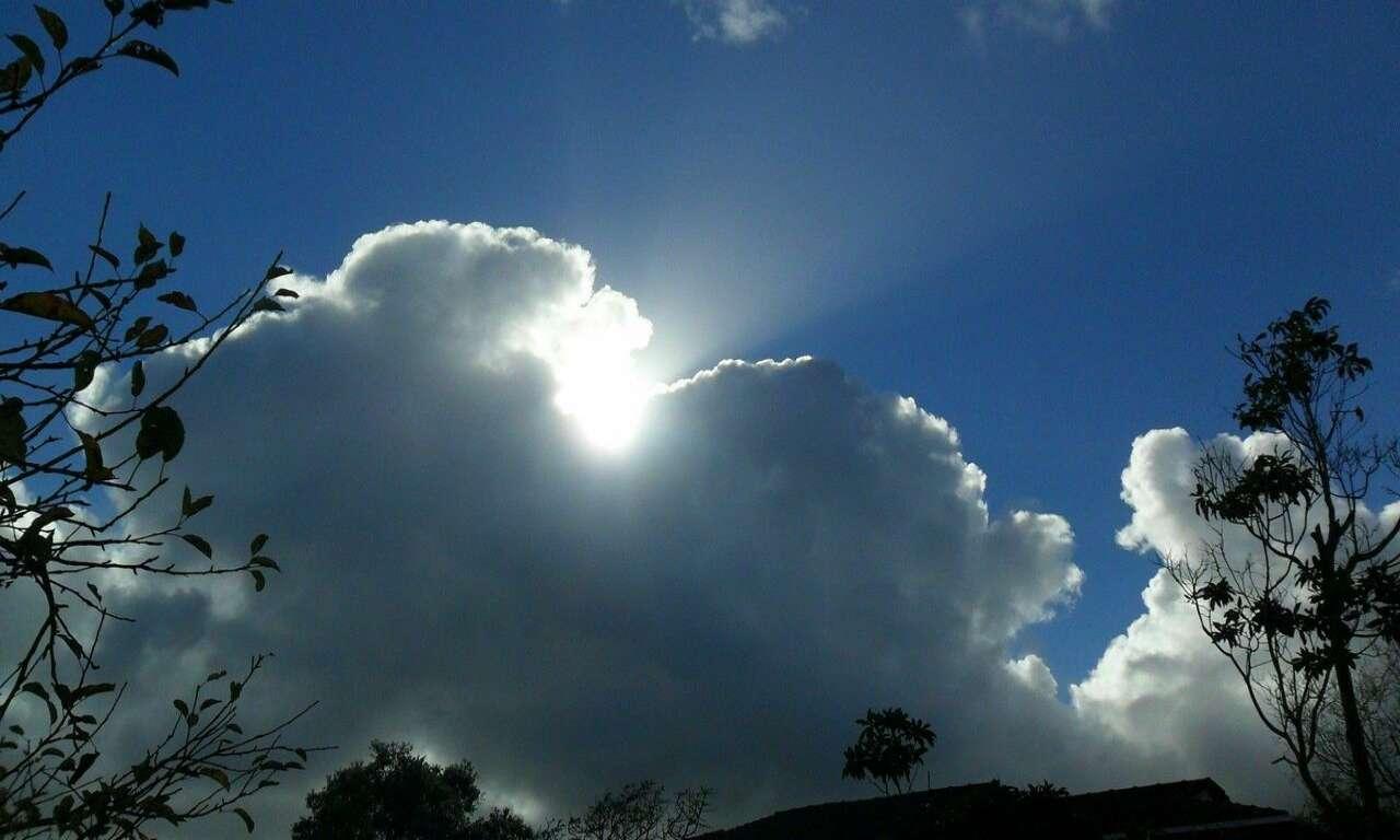 На Черкащині буде хмарно, але без дощу