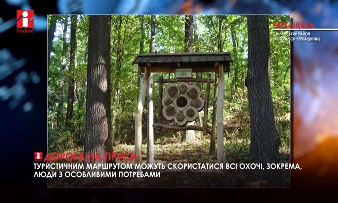 Краєзнавчий маршрут «Дорога на Пруси» облаштували лісівники Смілянського лісгоспу (ВІДЕО)