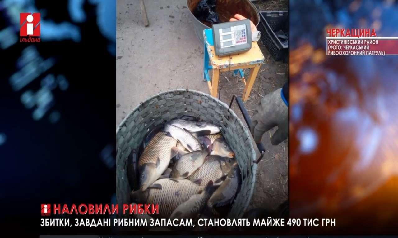 У сільському ставку браконьєри виловили 840 кілограмів риби (ВІДЕО)