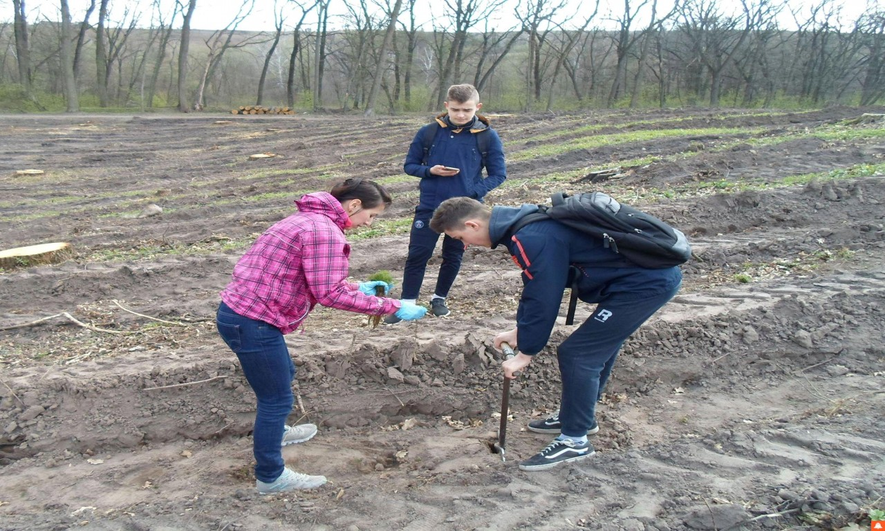 На честь трьох загиблих героїв-односельців єрківські школярі висадили ліс