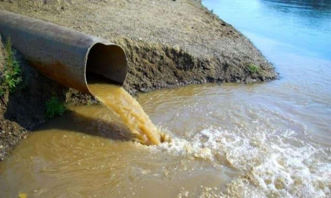 Кременчуцьке водосховище під Черкасами забруднене важкими металами і фенолами