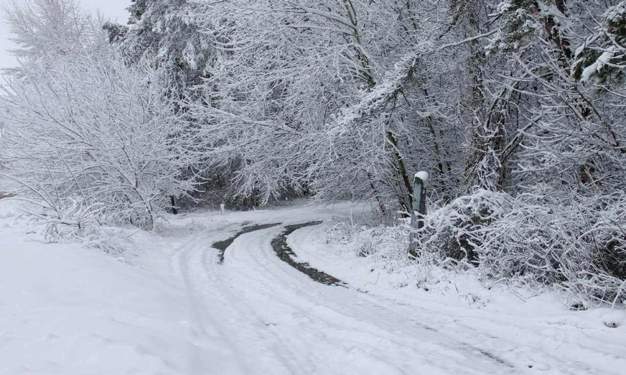 На Черкащині засніжить: значні опади та невеликі морози прогнозують синоптики