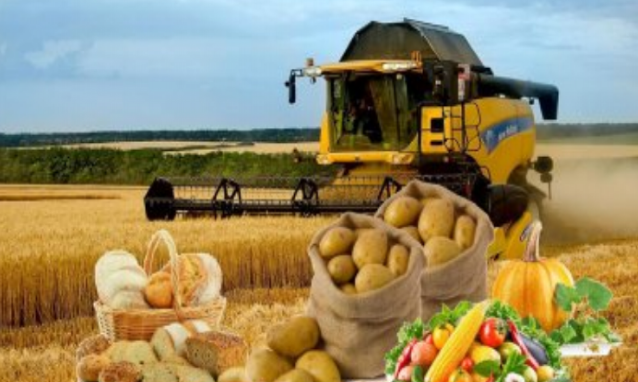 Виробництво аграрної продукції на Черкащині зросло на понад 13 %