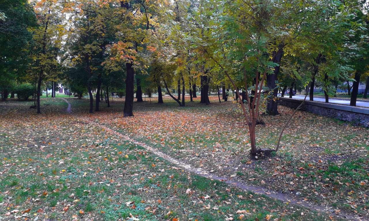 Осінні фарби золотоніського парку (ФОТОРЕПОРТАЖ)-1020