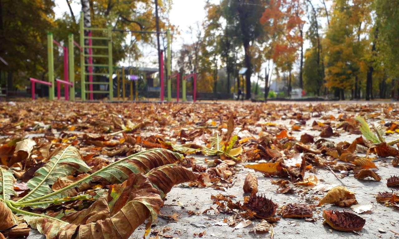 Осінні фарби золотоніського парку (ФОТОРЕПОРТАЖ)-1035