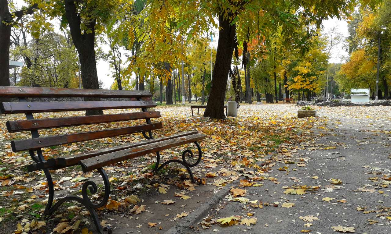 Осінні фарби золотоніського парку (ФОТОРЕПОРТАЖ)-1037