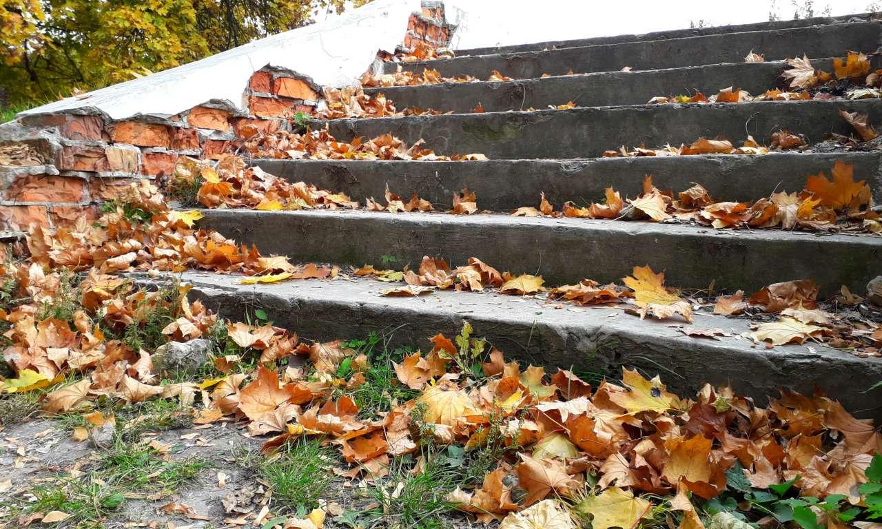 Осінні фарби золотоніського парку (ФОТОРЕПОРТАЖ)-1049