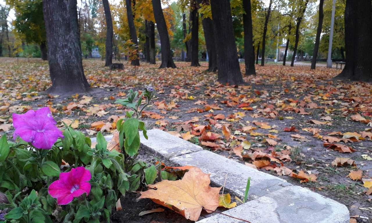 Осінні фарби золотоніського парку (ФОТОРЕПОРТАЖ)-1055