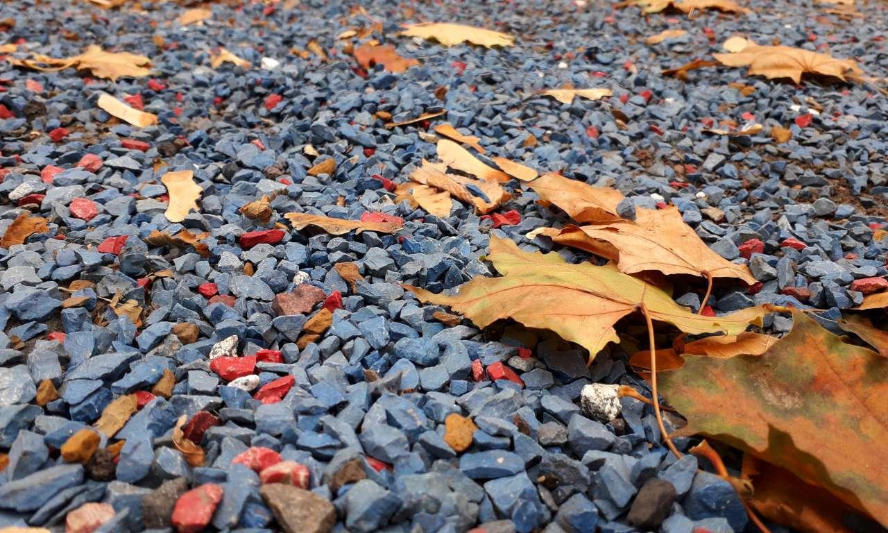 Осінні фарби золотоніського парку (ФОТОРЕПОРТАЖ)-1058