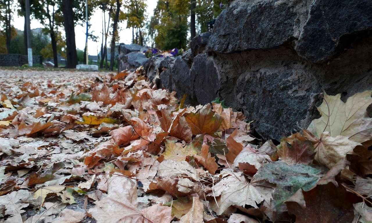Осінні фарби золотоніського парку (ФОТОРЕПОРТАЖ)-1060