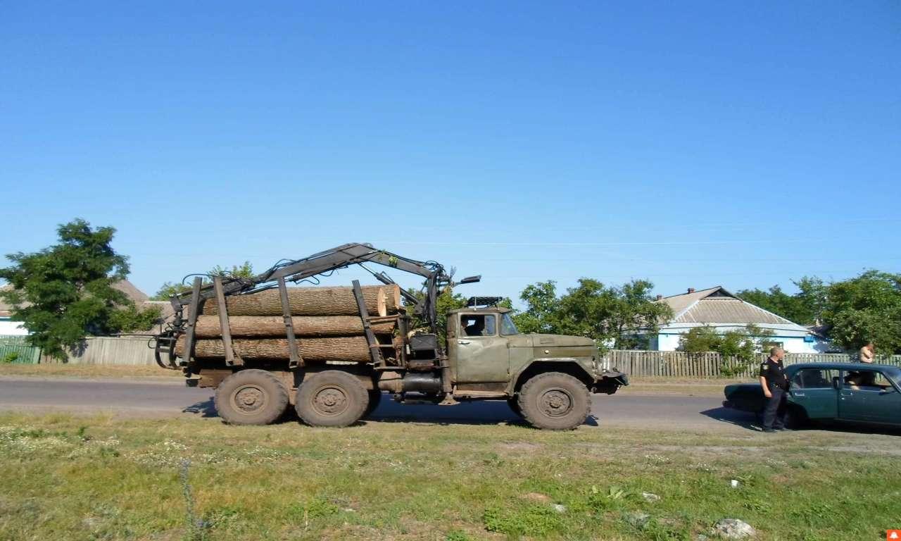 Лісівники Катеринопільщини затримали крадіїв лісу (ФОТО)