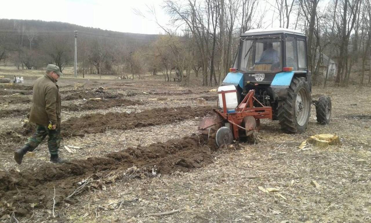 На Корсунщині створили 77 гектарів нового лісу