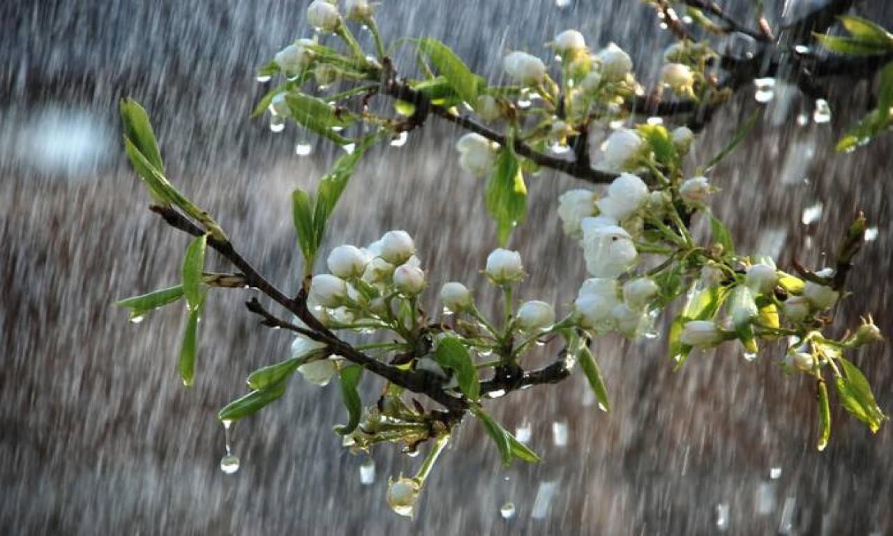 Дощі і похолодання на Черкащині: небезпеки ще немає, а користь можуть принести