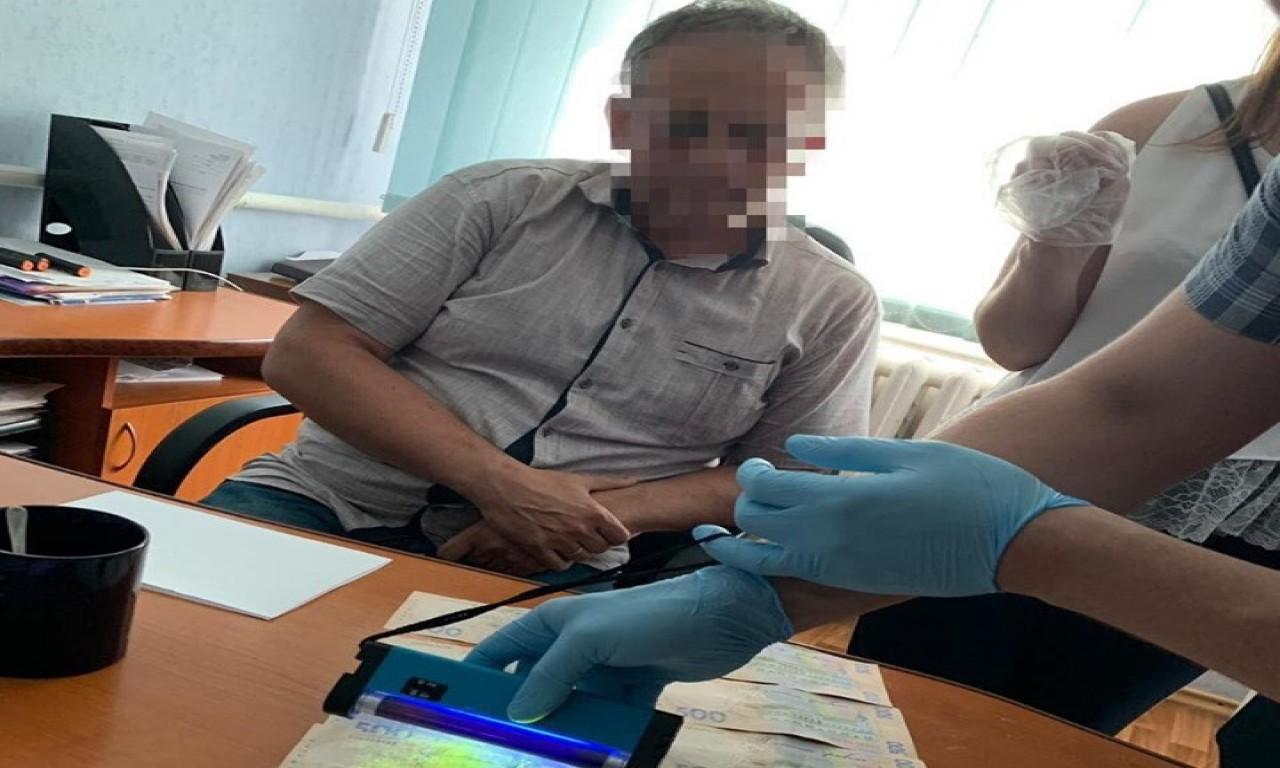 СБУ викрила на хабарі посадовця ПАТ «Черкасиобленерго»