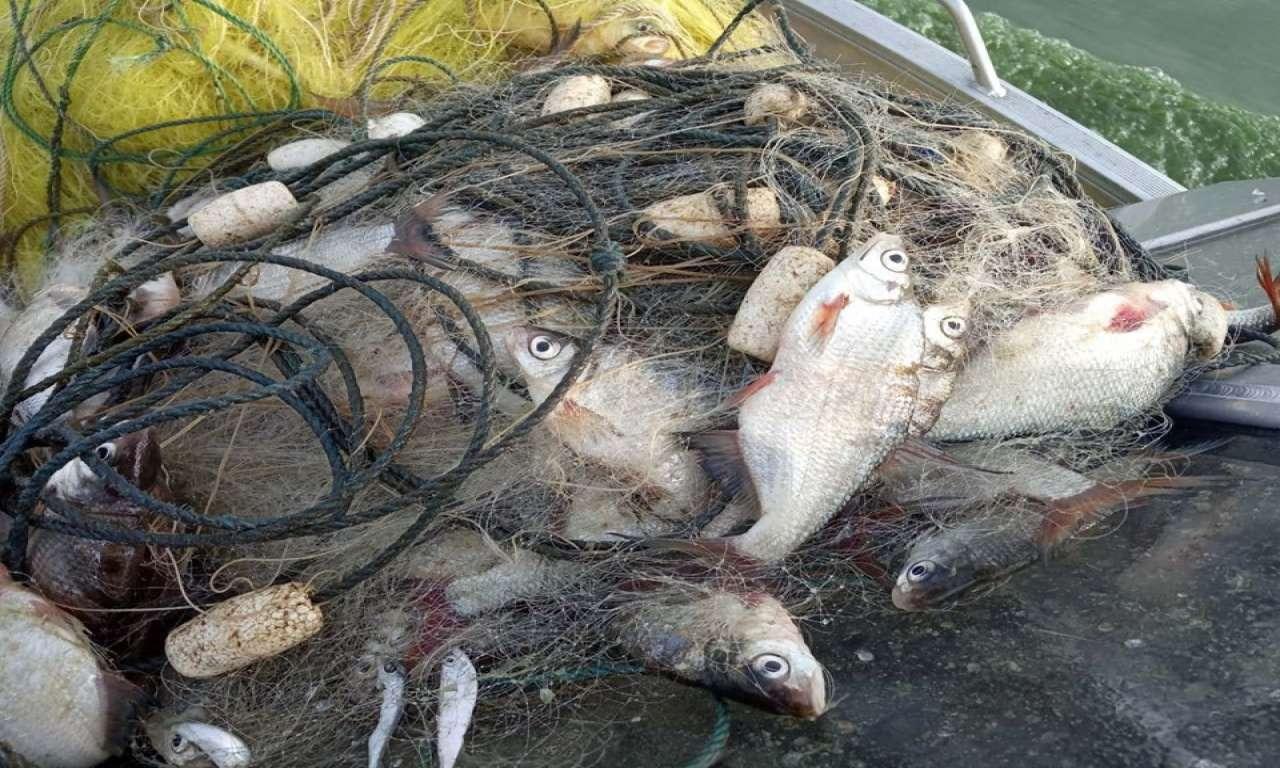 У Сулинському заказнику у браконьєрів вилучили близько 2,5 кілометрів сіток