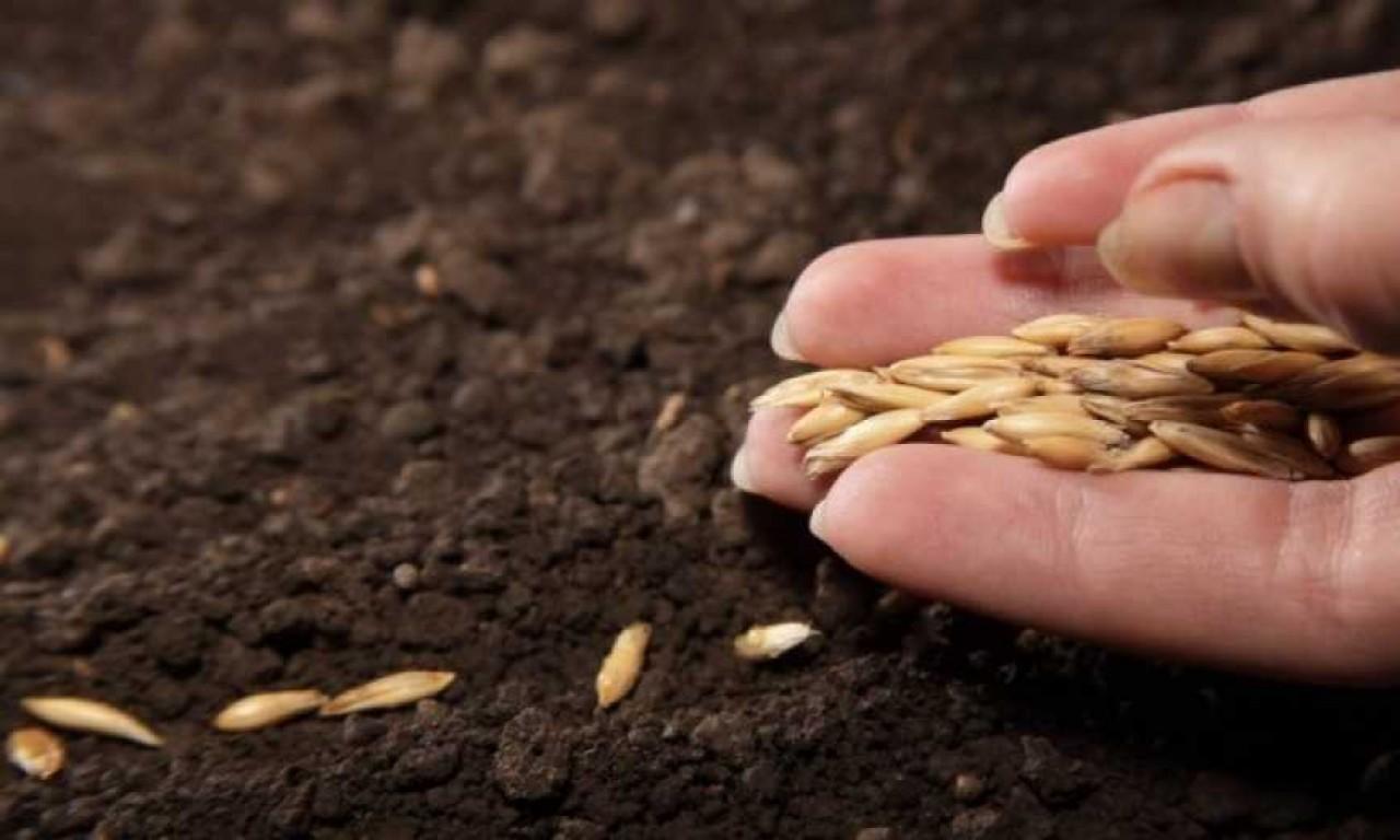 Посівну розпочали у 9 районах Черкащини