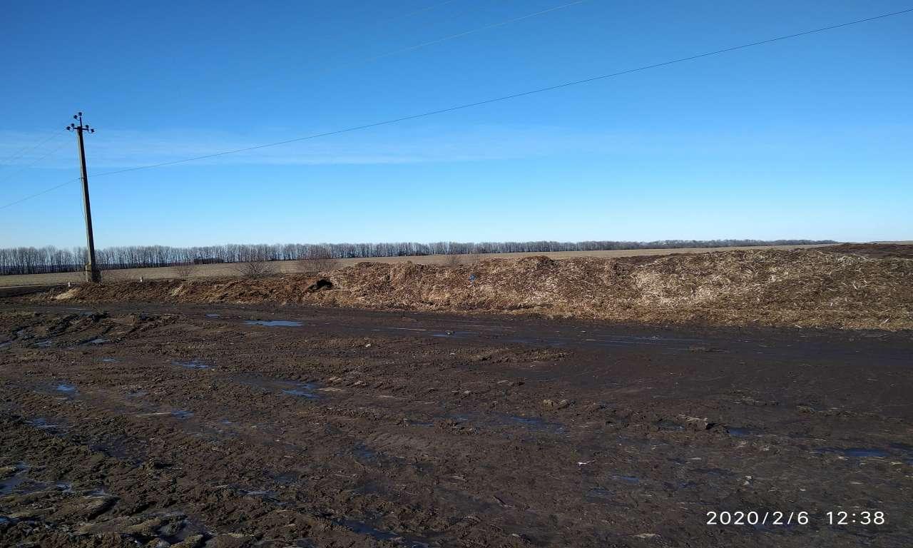 Більше 2 тисяч квадратних метрів землі на Жашківщині забруднено пташиним послідом