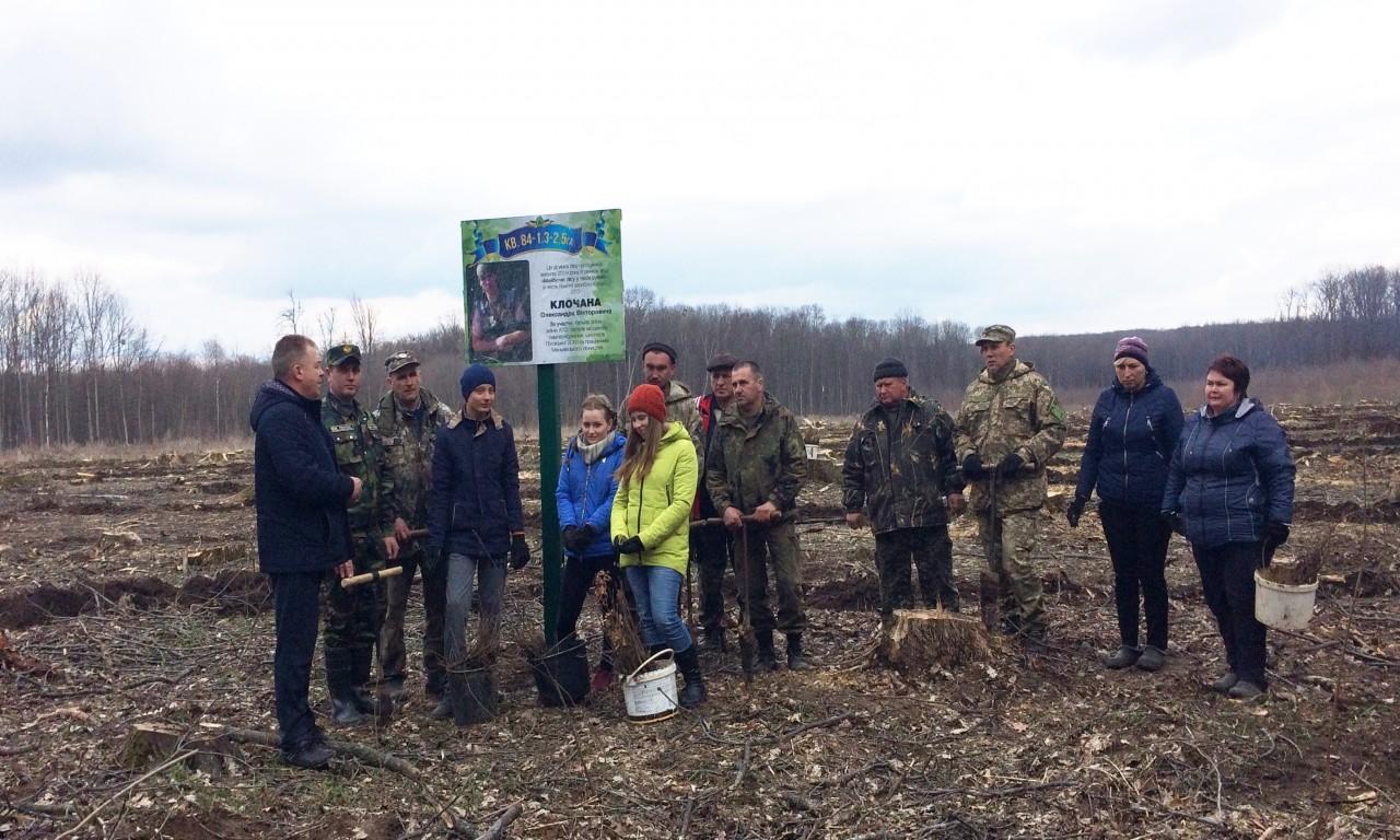 Дубовий ліс – на честь загиблого земляка: уманські лісівники вшанували пам'ять Олександра Клочана  (ФОТО)