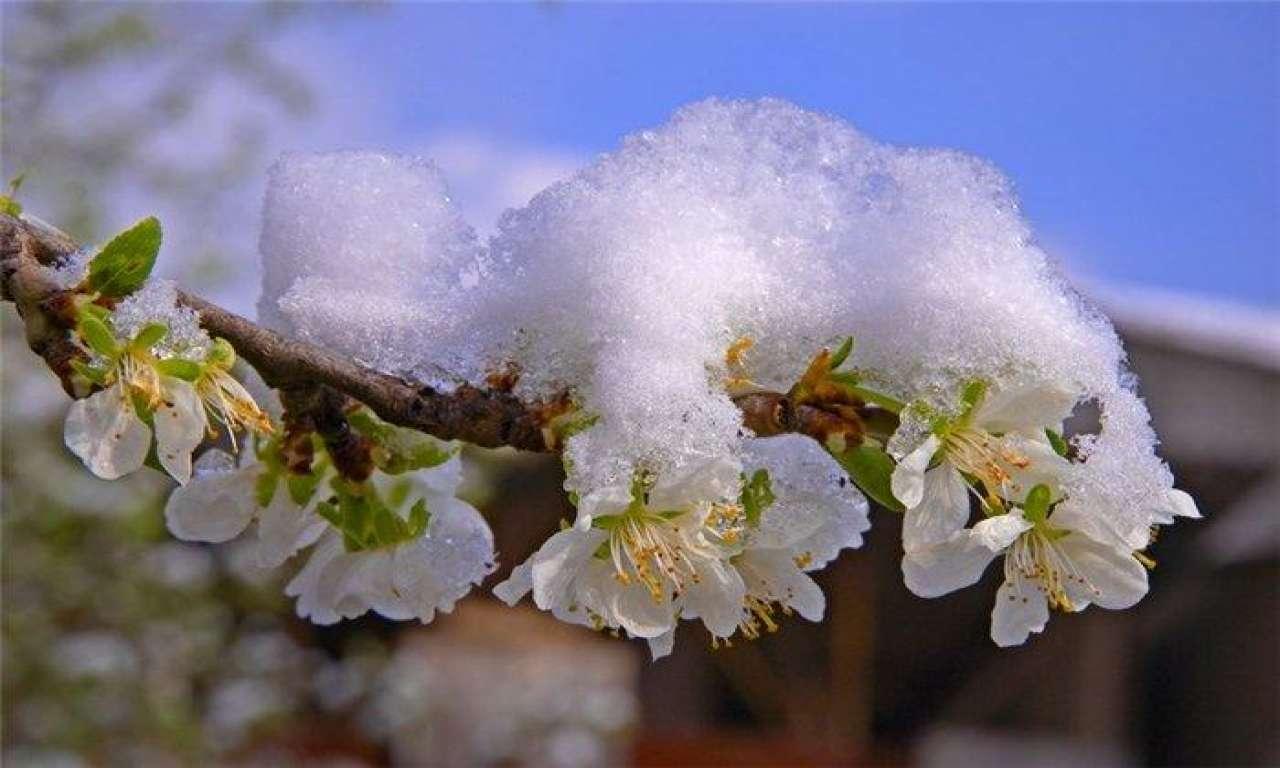 Черкащина готується до чергової хвилі холоду, дощів і гроз
