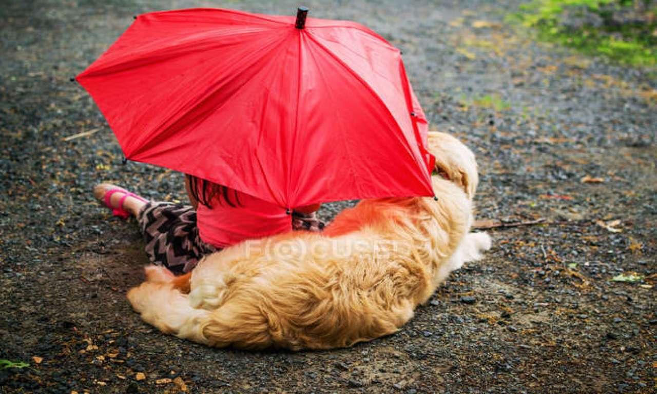 Ще тиждень дощів: літо очікуємо тільки з 20 червня