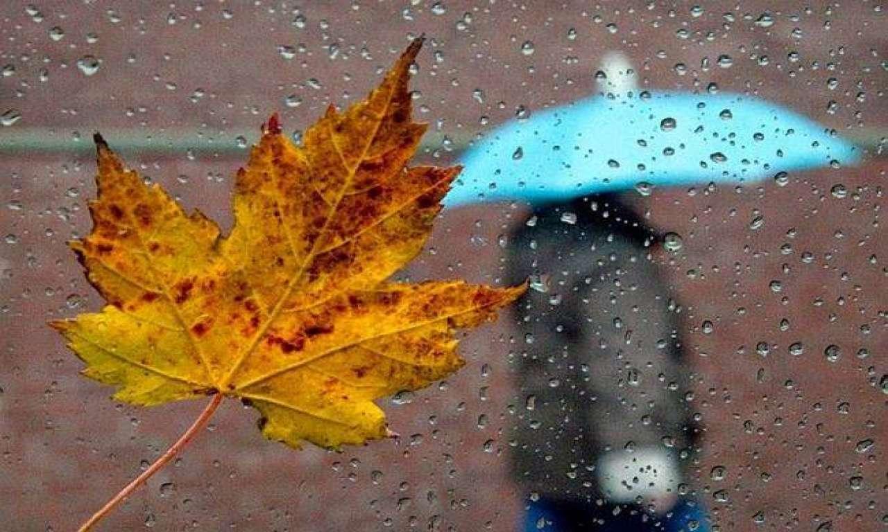 Дощі з грозами: погода не порадує на вихідні (ВІДЕО)