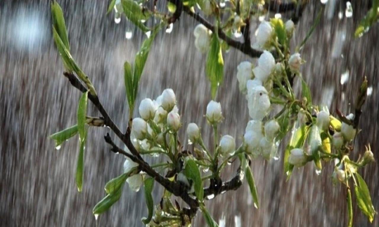 Після Великодня на Черкащину прийдуть дощі